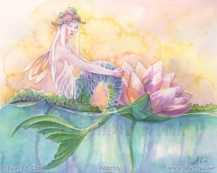 Water Lily Freshwater Mermaid